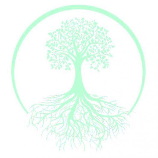 10 ANNI DI AITV – Dalle radici ai frutti